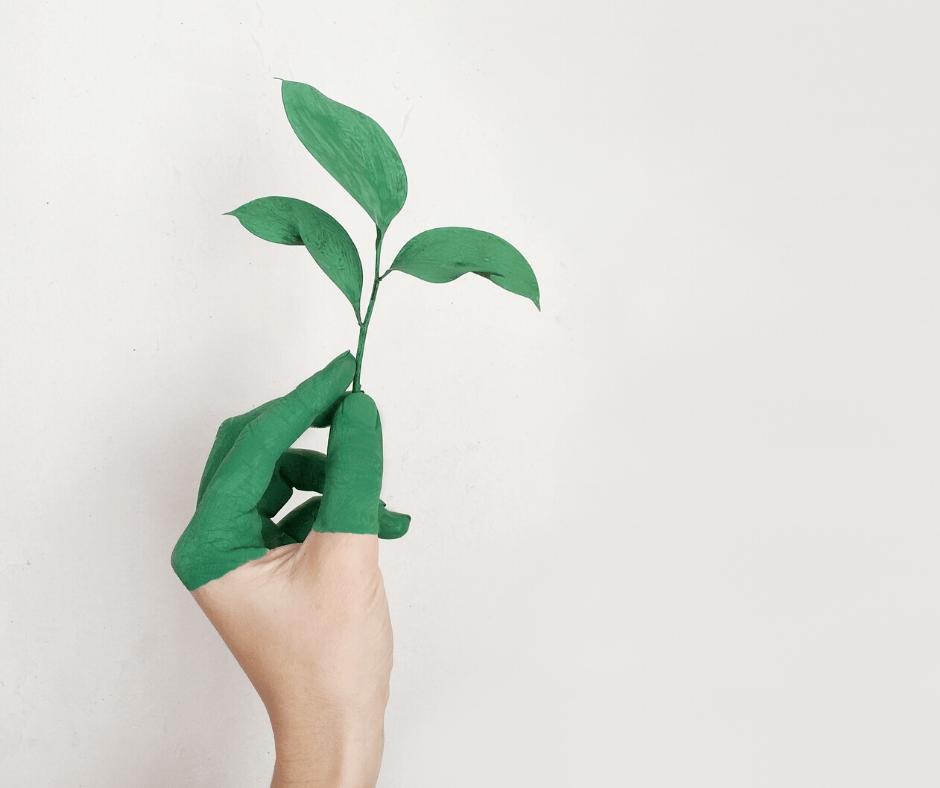 Main tenant une feuille représentant le développement durable